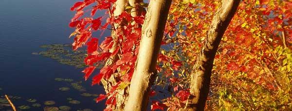 c-anishinabe-spiritual-centre-espanola-ontario-retreat-14
